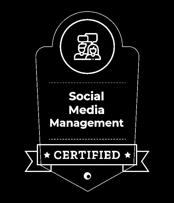 social media icon white