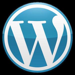 wordpress development - buzzfactory
