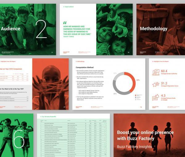 Top 100 Swiss Nonprofits Most influentials on the Internet 2021 - pages overview